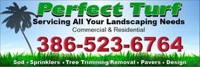 Perfect Turf Home Improvement, Repair, & Maintenance